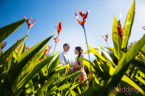 Hyatt Danang Vietnam Wedding Resort Photographer